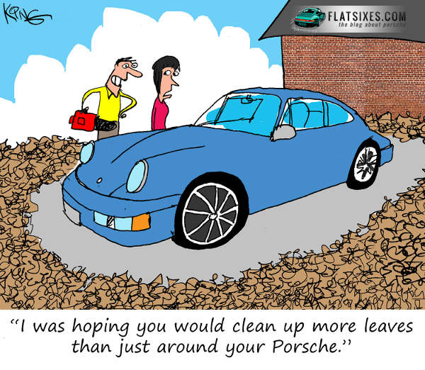 Porsche Cartoon Fall